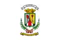 Alajuela flag.png