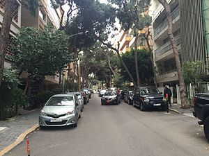 Badaro - Leafy street in Badaro