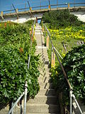 Alcatraz - Steps up to the Recreation Yard (4409209957).jpg