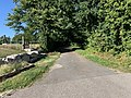 Allée Forêt St Sulpice Ain 1.jpg