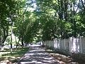 Alley near KNTU - panoramio.jpg