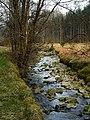 Allt Clachanlaoigh in Loch Ard Forest - geograph.org.uk - 1295329.jpg