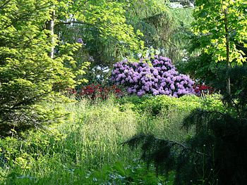 Leer jezelf ecologisch tuinieren/Register - Wikibooks