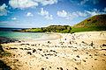 Anakena, Isla de Pascua - Flickr - Alanbritom.jpg