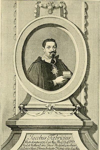 File:Anatomische Hefte (1918) (17985154168).jpg