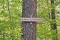 Ansichten aus dem Wald bei Schönaich 02.jpg
