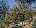 Apple-trees-on-the-chantemesle-hill(1).jpg!Large.jpg