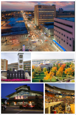 Clockwise from top: Downtown Appleton Skyline, Main Hall (Lawrence University), Neuroscience Group Field at Fox Cities Stadium, Fox River Mall, Houdini Plaza