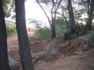 Aralvaimozhi - Image: Aralvaimozhi fort remains 1