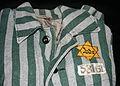 Auschwitz outerwear distinguish yellow Star of David.jpg