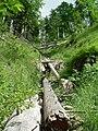 Ausgetrockneter Bachlauf am Alpinen Pfad.JPG