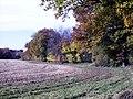 Autumn 4 (3009690669).jpg