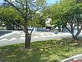 Av Marechal Carmona - panoramio - Paulo Humberto (1).jpg