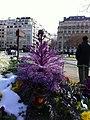 Avenue Foch, Paris, France - panoramio (23).jpg