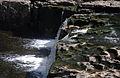 Aysgarth Falls MMB 04.jpg