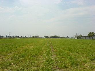Guanajuato - Farmland in the Bajío