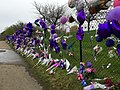 Balloons and Flowers (26573606632).jpg