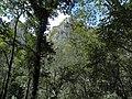 Banat, Nera Canyon - panoramio (69).jpg