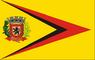 Bandeira Braúna.png