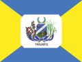 Bandeira Triunfo Pernambuco.png