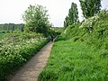 Bar Hill Bridleway - geograph.org.uk - 800635.jpg