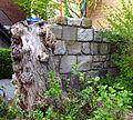 Barbarossamauer Alexianergraben Aachen.JPG