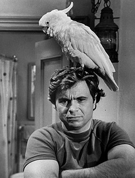 Baretta and Fred Robert Blake 1975.JPG