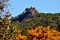 Barrington Tops - panoramio.jpg