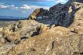 Basin and Range National Monument (21422635790).jpg