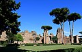 Bath of Caracalla Rome 2011 12.jpg