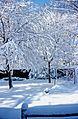 Beatiful Morning, Chicopee, MA 1975 (23952513449).jpg