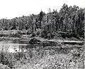 Beaver Lodge (5188010492).jpg
