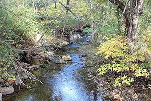 Beaver Run (Catawissa Creek) - Beaver Run looking upstream near Shumans, Pennsylvania, not far from its mouth