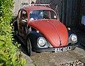 Beetle (2438639966).jpg