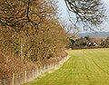 Belt of trees, Broadwell - geograph.org.uk - 1130527.jpg