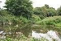 Bend, River Medway - geograph.org.uk - 2725150.jpg