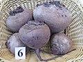 Beta vulgaris var conditiva Буряк столовий сорт Червона куля.jpg