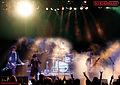 Biedermann live (Arena Wien 2010).jpg
