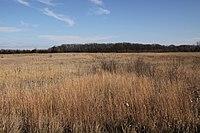 Birch coulee battlefield.jpg