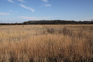 Renville County, Minnesota - Birch Coulee Battlefield near Morton.