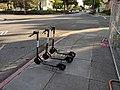 Bird scooters on the sidewalk in San Jose.jpg