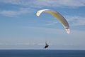 Black's Beach Paraglider at Torrey Pines Gliderport 6D2B4320.jpg