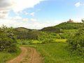 Blick auf die Wachsenburg 2.jpg
