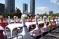 Boats on Shinobazu Pond - Ueno Park, Tokyo, Japan - DSC02035.JPG