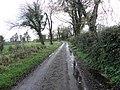 Botera Road - geograph.org.uk - 1569070.jpg