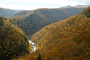 Breaks Interstate Park - Image: Breaks Canyon Fall