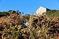 Bretagne - Finistère - Du Diben à la pointe de Primel - 025.jpg