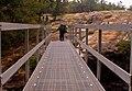 Bridge (1552002291).jpg