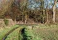 Bridleway east of Marton - geograph.org.uk - 1127827.jpg