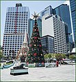 Brisbane City Hall Christmas Tree-1 (30598779984).jpg
